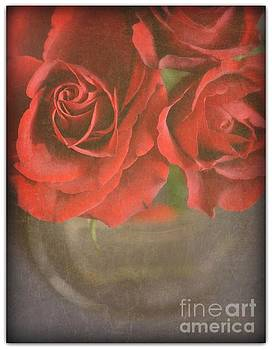 Scarlet Roses by Lyn Randle