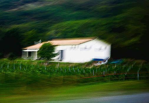 samdobrow  photography - Scenes from Italy II