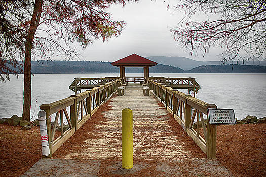Scenic Lake View by Tammy Chesney