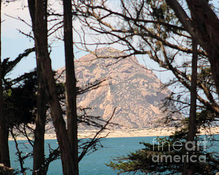 Scenic Morro Bay by Michael Lovell