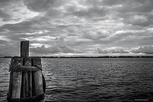 Scenic St. Andrews Bay  by Debra Forand