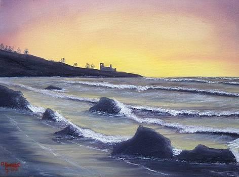 Scottish Tide by David  Barnes