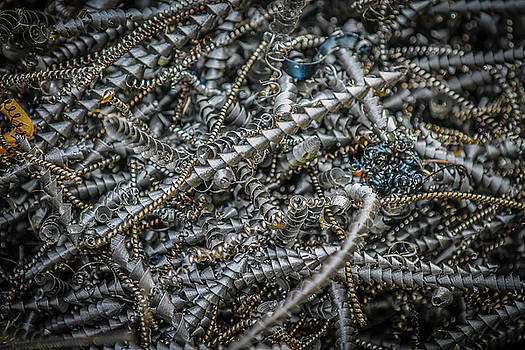 Scrap Metal  by Ray Congrove