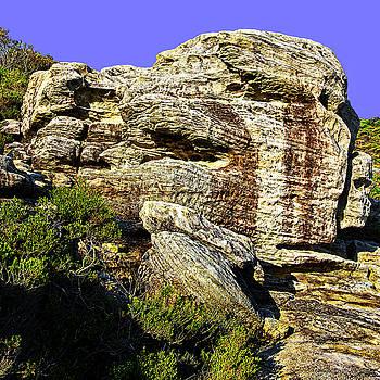 Sculpture Of Nature At North Head by Miroslava Jurcik