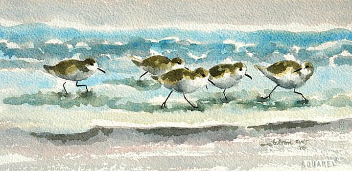 Scurrying along the shoreline 2  1-6-16 by Julianne Felton