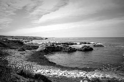 Joyce Dickens - Sea And Sky B And W