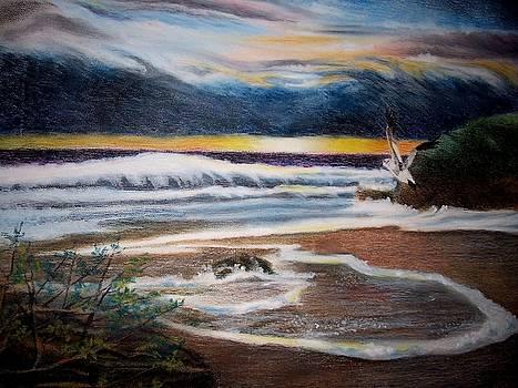 Sea Bird by Kathleen Romana
