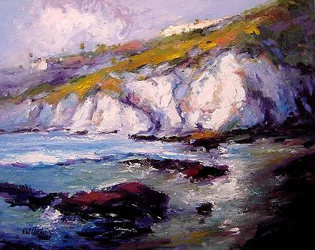 Sea cliffs in the sun by R W Goetting