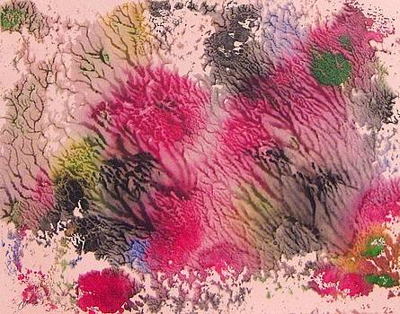 Sea Coral I by Cathy Minerva