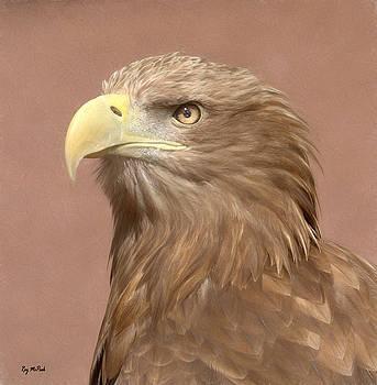 Sea Eagle by Roy McPeak