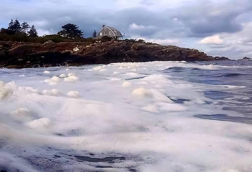 Sea Foam by Lisa Moore