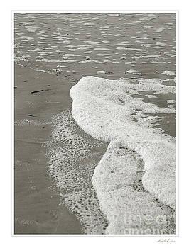 Sea Foam Sepia by Linda Olsen