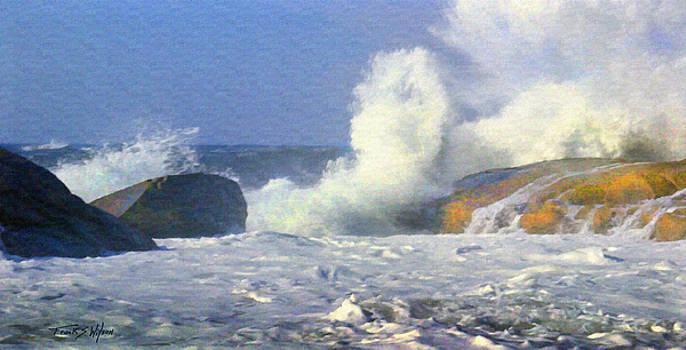 Sea Mist by Frank Wilson