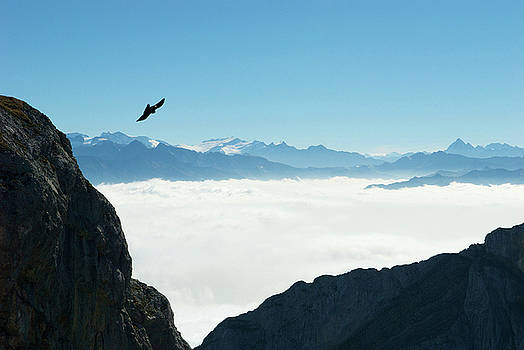 sea of clouds on Pilatus by Jirawat Cheepsumol