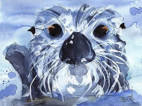 Sea Otter by Dawn Derman