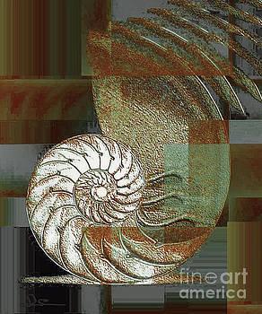 Sea Shell 2 by Diana Chason