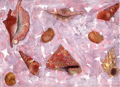 Sea Shells by Annemeet Hasidi- van der Leij