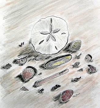 Sea Shells by Diane Frick