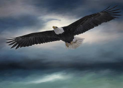 Sea To Sky - Eagle Art by Jordan Blackstone