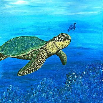 Sea Turtle by Sabrina Zbasnik