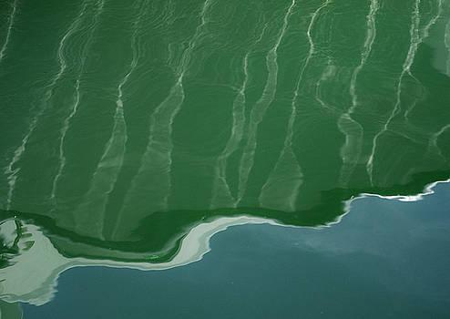 Sea Worthy by Nicole Robinson