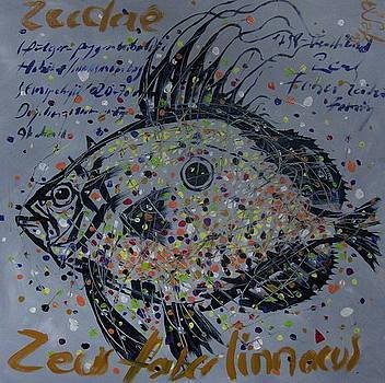 Seadae Fish by Senol Sak