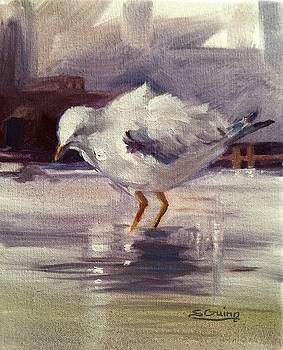 Seagull At The Port by Shane Guinn