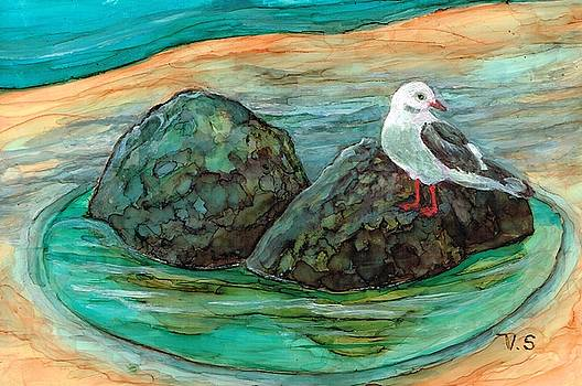 Seagull Sanctuary by Val Stokes