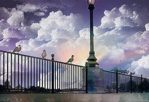 Seagulls On A Rail by Phil Clark
