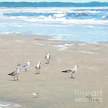 Seagulls by Tammy Lee Bradley