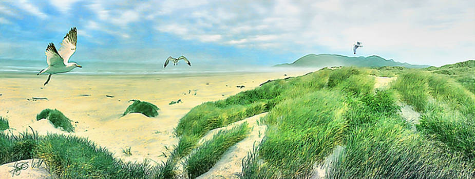 Seagulls by Tom Schmidt