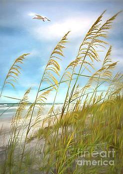 Seaoats Fantasy by Linda Olsen