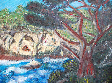 Seascape at Point Lobos by Carolyn Donnell