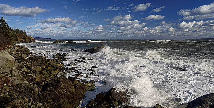 Seascape At Quoddy Head State Park by Marty Saccone