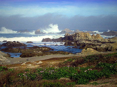 Joyce Dickens - Seascape Heaven