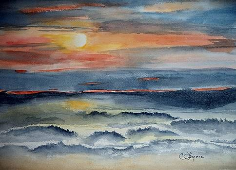 Seascape Sunset by Constance Larimer