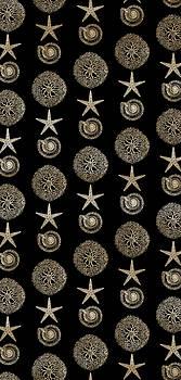 Frank Tschakert - Seashell Pattern