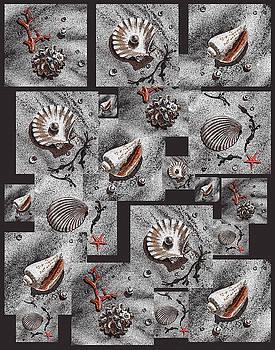 Irina Sztukowski - Seashells On Black
