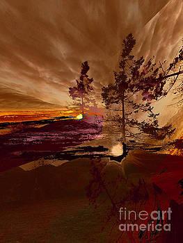 Sechelt Tree 5 by Elaine Hunter