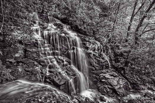 Secluded Falls - BW by Christopher Holmes
