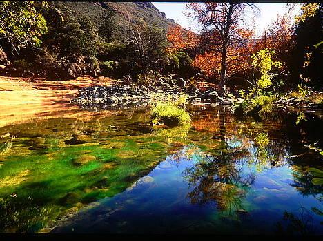 Sedona Reflections by David Gardner