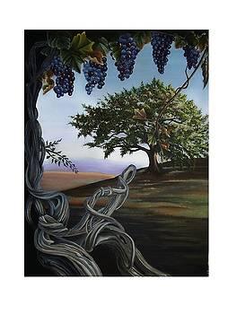 Seeds of Eden by Kathleen Romana