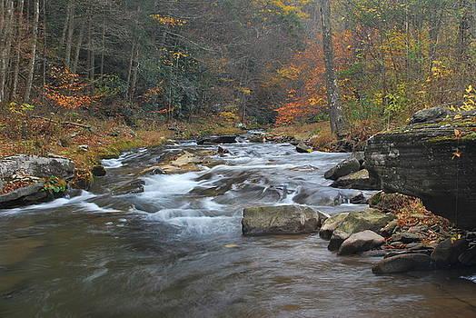 Seneca Creek Autumn by Randy Bodkins