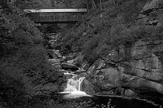 Juergen Roth - Sentinel Pine Bridge Spanning Across Liberty Gorge