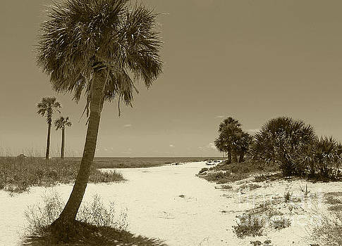 Sepia Beach by Jeanne Forsythe