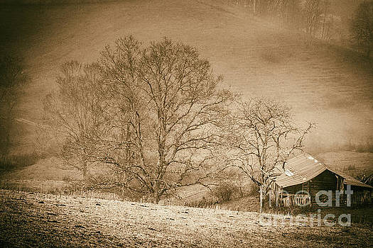 Sepia Field and Barn by Thomas R Fletcher
