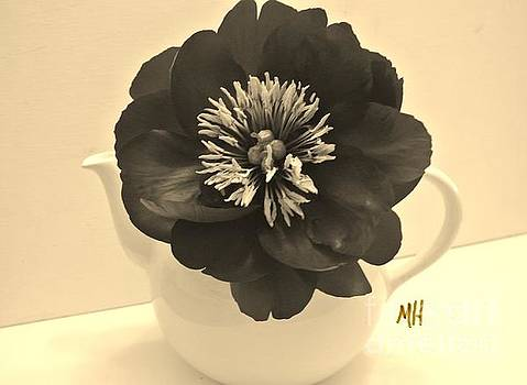 Sepia Peony in a Teapot by Marsha Heiken
