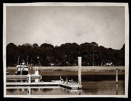Sepia Tone Lagoon by Phil Perkins