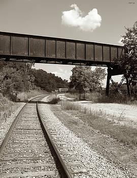 Sepia Tone Train Tracks by Phil Perkins