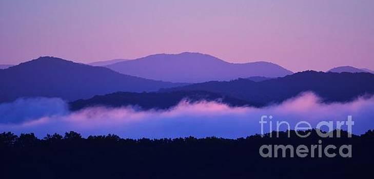 Serene Sunrise by Carol McGunagle